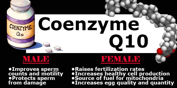 coenzyme q10 fertility