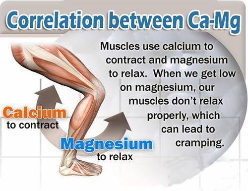 Benefits of Calcium and Magnesium