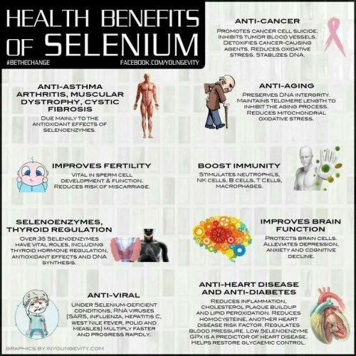 Selenium Health Benefits