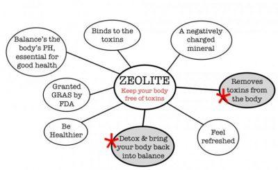 zeolite uses