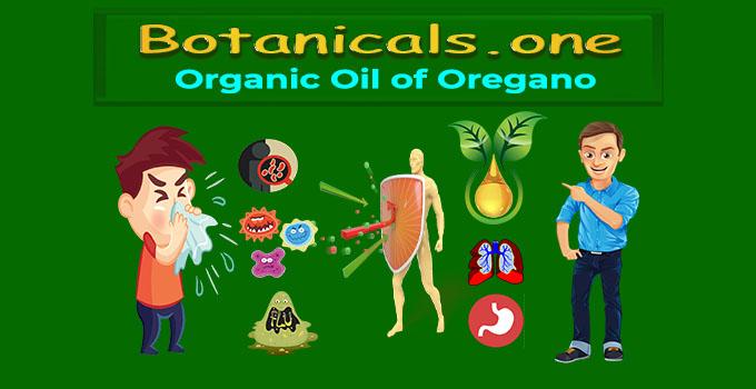 oil of oregano extract