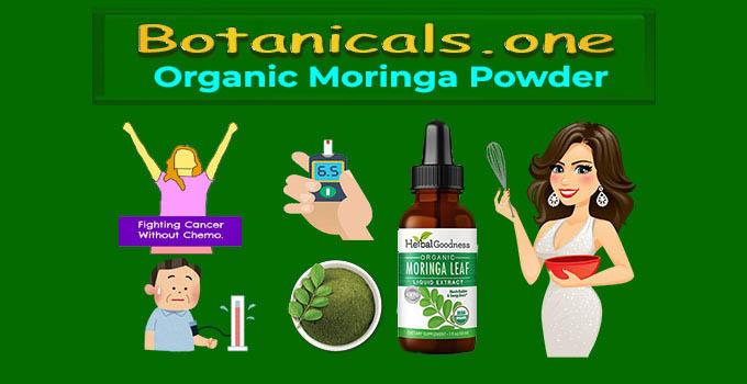 where to buy moringa